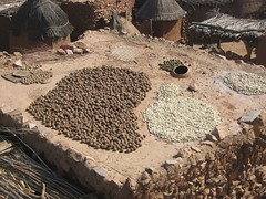 typical roof of dogon