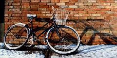 UK - Oxford - Snowy bike panorama (Darrell Godliman) Tags: uk greatbritain travel winter shadow england copyright snow cold brick travelling tourism bike bicycle wall europe britishisles unitedkingdom britain snowy widescreen transport freezing eu panoramic cycle oxford gb oxfordshire allrightsreserved oxon wintery c41 travelphotography instantfave omot travelphotographer flickrelite dgphotos darrellgodliman wwwdgphotoscouk dgodliman alltypesoftransport
