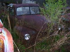 1952 Chevrolet 3600 (forwardlookguy) Tags: auto chevrolet truck automobile trucks junkyard oldtruck salvage 1952 salvageyard 3600