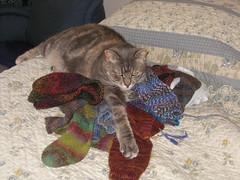 June with handknit socks