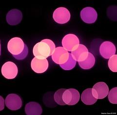 HBW (Stephan Geyer) Tags: pink square fun purple bokeh magenta vivid explore experimenting explored hbw efs1755mmf28isusm