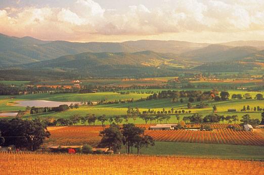 Melbourne - Yarra Valley