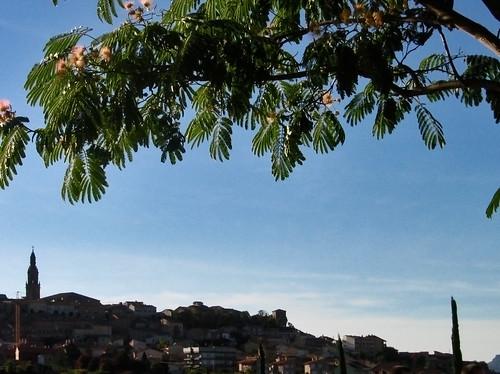 Vivanco-Briones