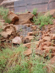 red rocks after rain