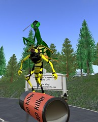 mantid and wasp surfing insecticide (freaksexnoobs) Tags: silly funny sl secondlife ugly unusual demented noobs npirl