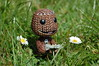 Sackboy (DaveJC90) Tags: white flower macro green grass yellow closeup figure daisy playstation ps3 playstation3 littlebigplanet sackboy mcobj