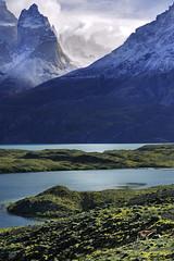 Lago Nordenskiöld - Patagonia - Chile (tigrić) Tags: chile travel patagonia southamerica nature landscape wildlife natura guanaco torresdelpainenationalpark cuernosdelpaine lamaguanicoe magallanesregion nordenskjöldlake lagonordenskiöld