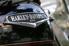 Harley Davidson (by matthiasschack)