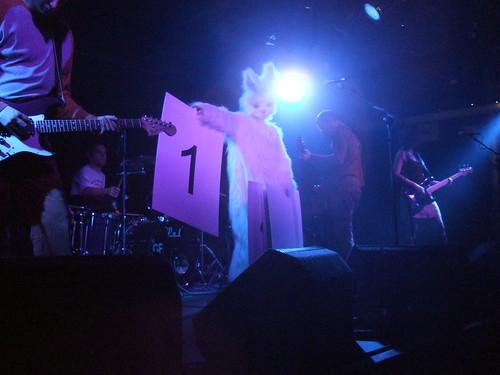 Bunny Countdown