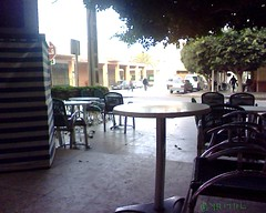 Cafe_Berkane