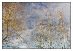 (Christian Lagat) Tags: france reflection river reflet aurillac nikkor50mmf18d jordanne artlibre nikond40x rvière