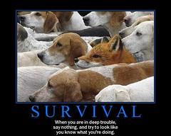 art-of-survival (dmixo6) Tags: funny motivator humour attitude despair motivation parody demotivator demotivation