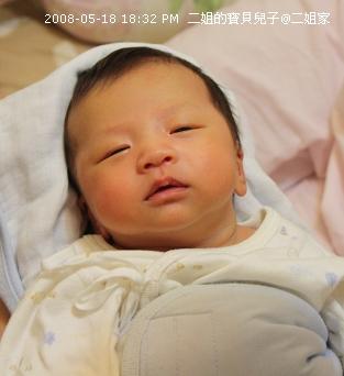 二姐的寶貝兒子9