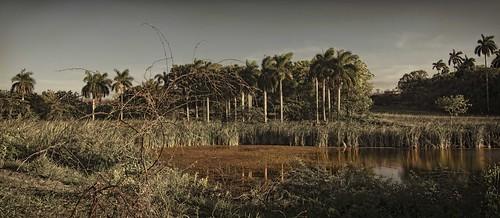 Reflexiones a lo cubano by Rey Cuba