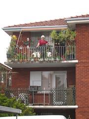 Baba's verandah