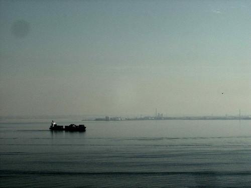 DSC00204© fatima ribeiro2007