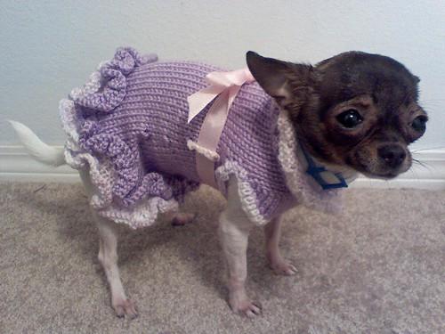 Free Crochet Ruffle Baby Dress Pattern Crochet And