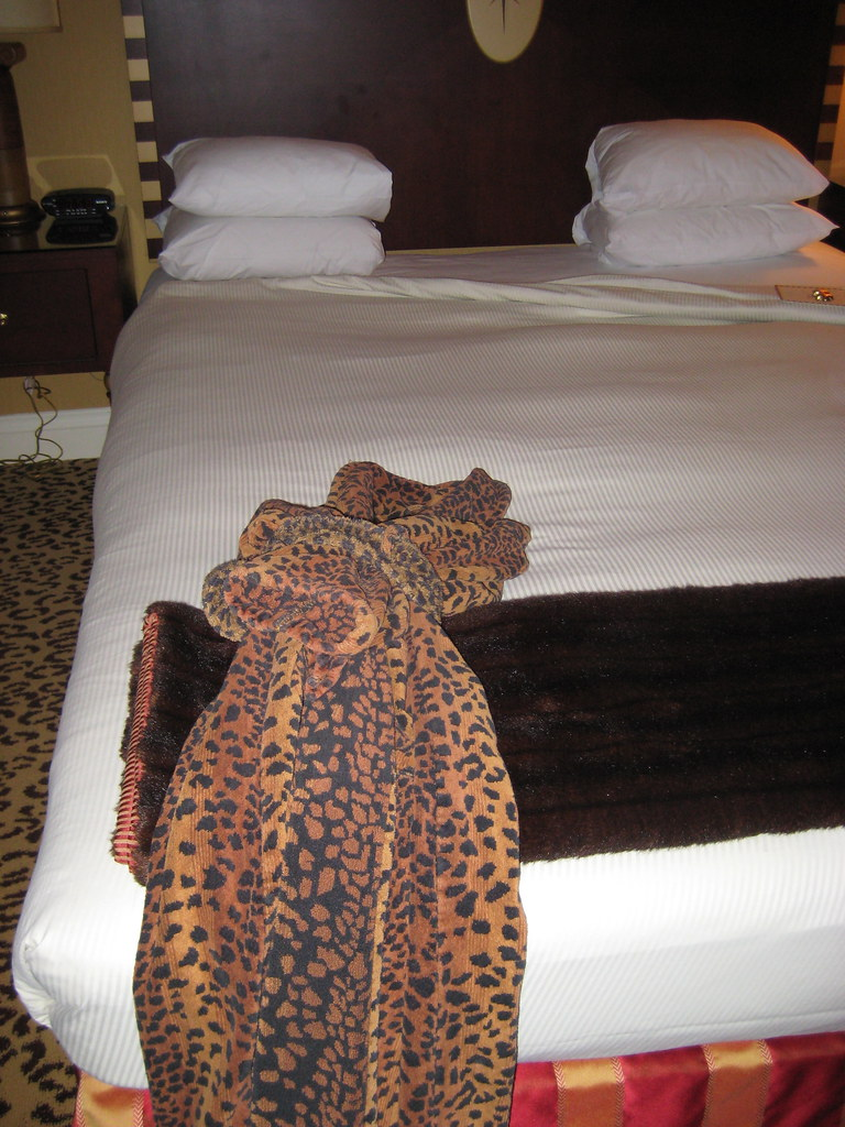 Leopard Skin robe