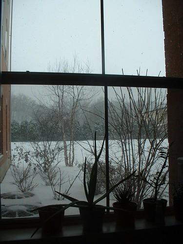 Snowitude