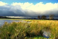 Keep the light ON, will you ? (Nicolas Valentin) Tags: light tree clouds landscape scotland scenery mood lomond soe beautifull mywinners