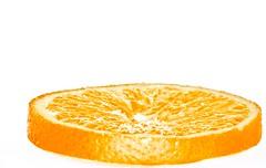 [フリー画像] [食べ物] [果物/フルーツ] [オレンジ]        [フリー素材]