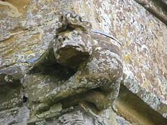 Gargoyle (Keith JM G (Trying to get back into taking picture) Tags: church geotagged somerset gargoyle levels muchelney langport muchelneychurch geo:lat=51020782 geo:lon=2815558