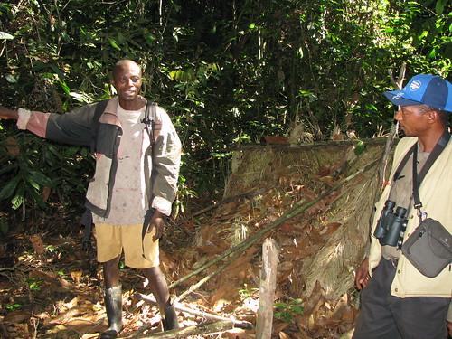 Jean T explains the poaching episode