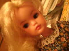 P5170068 (kanakochka2) Tags: doll tammy sindy