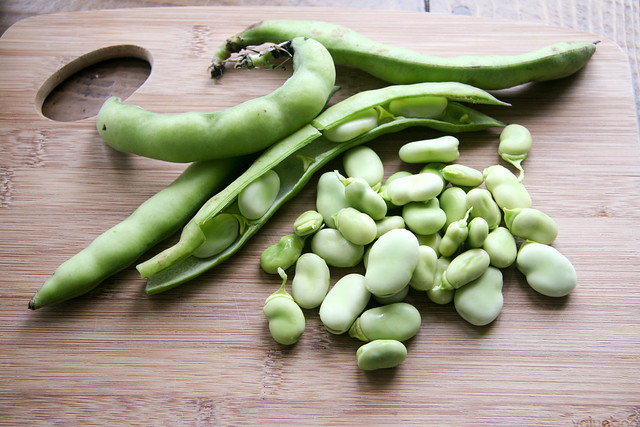 Fava Beans and Corn