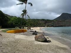 Hanauma Bay (Jeromy Evans) Tags: hawaii oahu hanaumabay