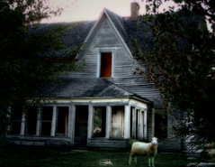 sheep lookout house (McMorr) Tags: ranch old family house abandoned home rural sheep farm country neglected eerie spooky forgotten weathered disused homestead discarded forsaken metaphor livestock deserted decayed dilapidated abused fallingapart creativenonfiction mcmorr