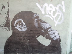 Bansky monkey
