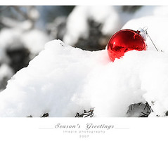 Merry Pixmas (Imapix) Tags: christmas winter snow ball photo photographie hiver neige nol happyholidays merrychristmas bauble greeting ornement christmasball seasonsgreetings joyeuxnol abigfave imapixphotography gatanbourquephotography