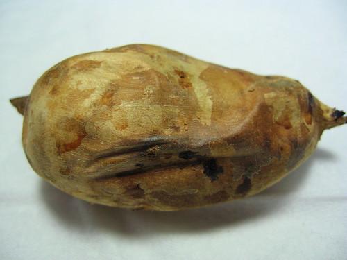 蕃薯。地瓜