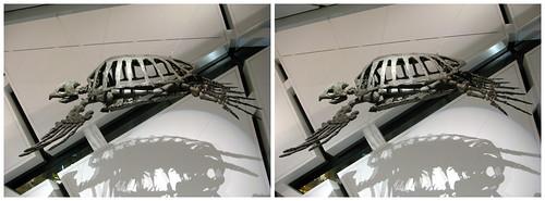 3D Dinosaur 04