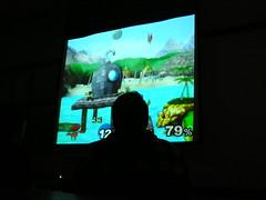 Wii Screen