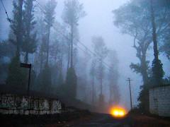 Light my journey ..... (Chendur) Tags: road trees light india fog path journey tamil tamilnadu nadu yercaud chendur chendurphotography chendurvenkatraman chendurvenkataramanphotography chendurvenkatramanphotography