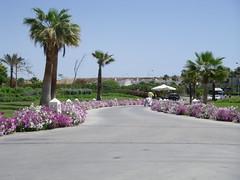 Novatel - Sharm