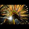 night sun future (© Tatiana Cardeal) Tags: pictures light brazil portrait people southamerica festival brasil digital 1 photo published native picture culture documentary tribal brazilian invenciblespirit tatianacardeal fotografia indios ethnic 2008 indien cultura indigenous brésil bertioga ethnology indigenouspeople boe documentaire indische etnia ethnologie bororo documentario ethnique povosindígenas ethnie pueblosindígenas semep indigenousfestival festanacionaldoíndio indigenenvölker
