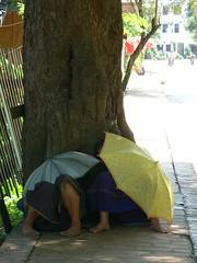 , , ,   -   (galit lub) Tags: road street blue tree girl yellow kids children foot bodylanguage laos   loangphrabang  minipost