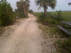 4-old Savannah Tybee railroad trail 1