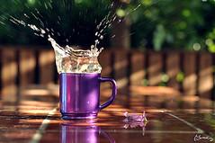 Culuuppp!! :P (morkedi ) Tags: flower green cup water dof purple bokeh bardak mug su splash mor iek yeil 50mmf14d morkedi nikond90 alanderinlii srama morkedi