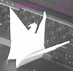 origami bird oct 20 2007