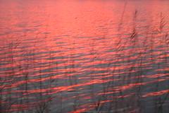 IMG_3743 Favorite sunset. (HAKANU) Tags: autumn sunset lake water geotagged colours sweden smland breathtaking indiansummer encarnado brittsommar helgasjn indiansommar flamecoloured excapture brittsummer naturemasterclass