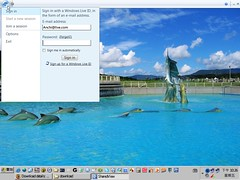 Window Live ShareView Beta 2
