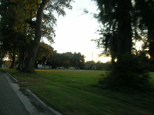 Ocala from the car