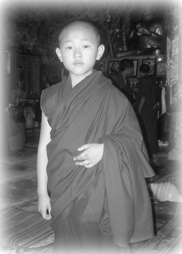 HE Tharig Yangsi, Tharlam Monastery, Bodha, Kathmandu, Nepal by Wonderlane