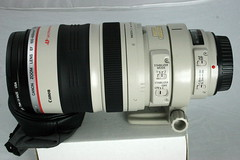 Canon 100-400mm IS Lens