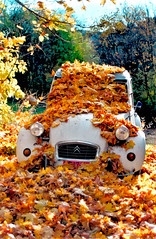 Old and forgotten I (Maron) Tags: old autumn red orange leaves car yellow forgotten 2cv goldenglobe anawesomeshot supermarion excellentphotographerawards betterthangood marionnesje
