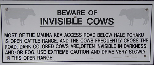 Invisible Cows?